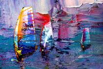 The Art Of Windsurfing von Miki de Goodaboom