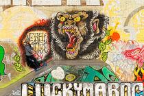 Graffiti- und Skatepark im RheinPark Duisburg (7-07902) von Franz Walter Photoart