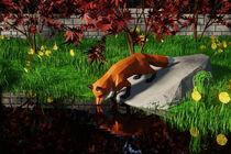 Fox Friday: Mirror by keeya