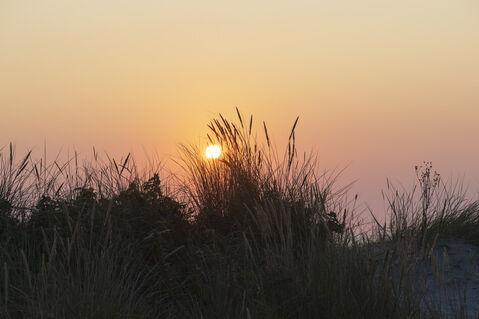 Dsc-8573-dot-sunrise3-08-19