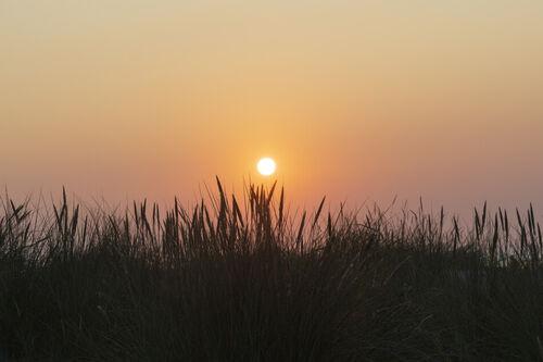 Dsc-8571-dot-sunrise2-08-19