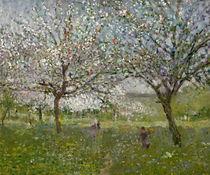 Apple Trees in Flower  von Ernest Quost