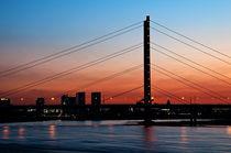 Rheinkniebrücke von Markus Hartmann