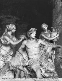 Apollo tended by the nymphs in the grove of the Baths of Apollo von Francois Girardon