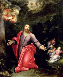 Jesus in the Garden of Olives by Otto van Veen