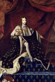 Portrait of Louis XIV  von Henri Testelin