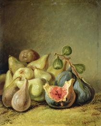 Fruit Still Life  von Johann Heinrich Wilhelm Tischbein