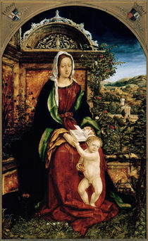 The Virgin and Child by Hans Burgkmair