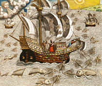 Flying Fish Meet in the Torrid Zone von Theodore de Bry
