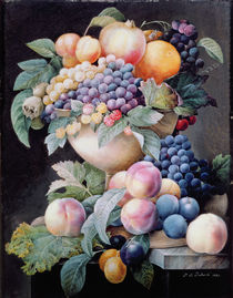 Fruits  von Pierre Joseph Redoute
