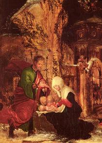 Birth of Christ  by Albrecht Altdorfer