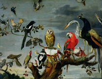 Concert of Birds  von Frans Snyders or Snijders