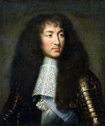 Portrait of Louis XIV  by Charles Le Brun