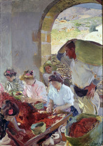 Preparing the Dry Grapes von Joaquin Sorolla y Bastida