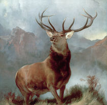 Monarch of the Glen von Sir Edwin Landseer