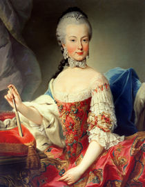 Archduchess Maria Amalia Habsburg-Lothringen von Martin II Mytens or Meytens