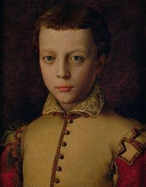 Portrait of Ferdinando de' Medici  by Agnolo Bronzino