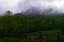 Landscape from Asturias by Jose María Palomo de la Fuente