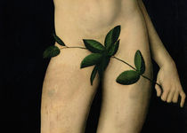 Adam by the Elder Lucas Cranach