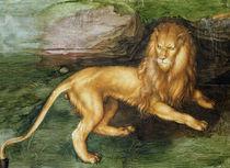 Lion  by Albrecht Dürer