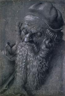 Man Aged 93  by Albrecht Dürer