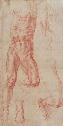 W.13r Study of a male nude by Michelangelo Buonarroti