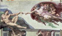 Sistine Chapel Ceiling  von Michelangelo Buonarroti