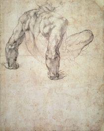 W.63r Study of a male nude by Michelangelo Buonarroti