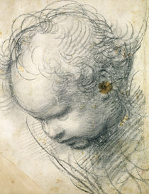 Head of a Cherub  von Raphael