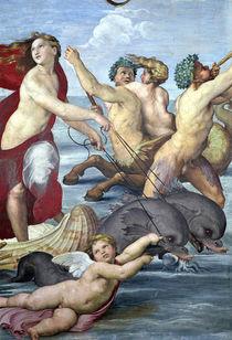 Galatea by Raphael