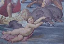 Galatea von Raphael