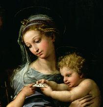 The Virgin of the Rose von Raphael