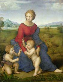 Madonna in the Meadow von Raphael