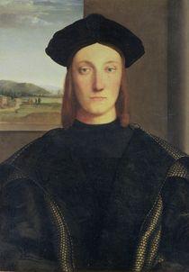 Portrait of Guidobaldo da Montefeltro von Raphael