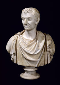 Bust of Marcus Cocceius Nerva  by Roman