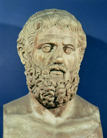 Bust of Sophocles  by Roman