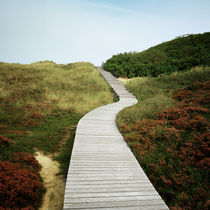 Amrum - path to the sea #1 von oc