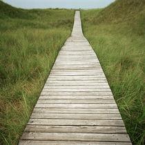 Af-amrum-path-3
