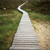Amrum - path to the sea #2 von oc