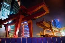 Dsc3719-shanghai-dehesdin-0073
