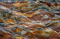 Rock pattern, Glacier National Park, Montana von Tom Dempsey