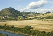 New Zealand Country