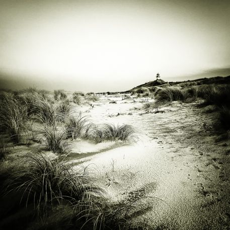 Img-6313-dfine-sylt-impressions-2