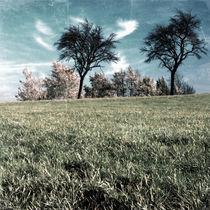 hazy memories von Gerald Prechtl