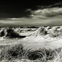 Img-6335-sylt-impressions-5