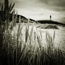 Img-4131-dfine-sylt-impressions-6