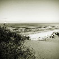 Img-4370-sylt-impressions-7