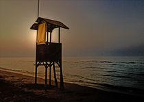 Sharkbay