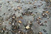 Steine im Eis von Max Nemo Mertens