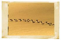 Desert Storm by Guido-Roberto Battistella